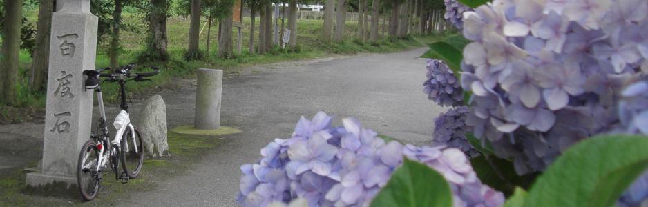 2015/06/28:雲間より 早苗待ち侘ぶ 朝日かな [竹内峠-葛城の道-水越峠]